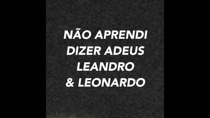 NAO APRENDI DIZER ADEUS - LEANDRO E LEONARDO - KARAOKE COVER