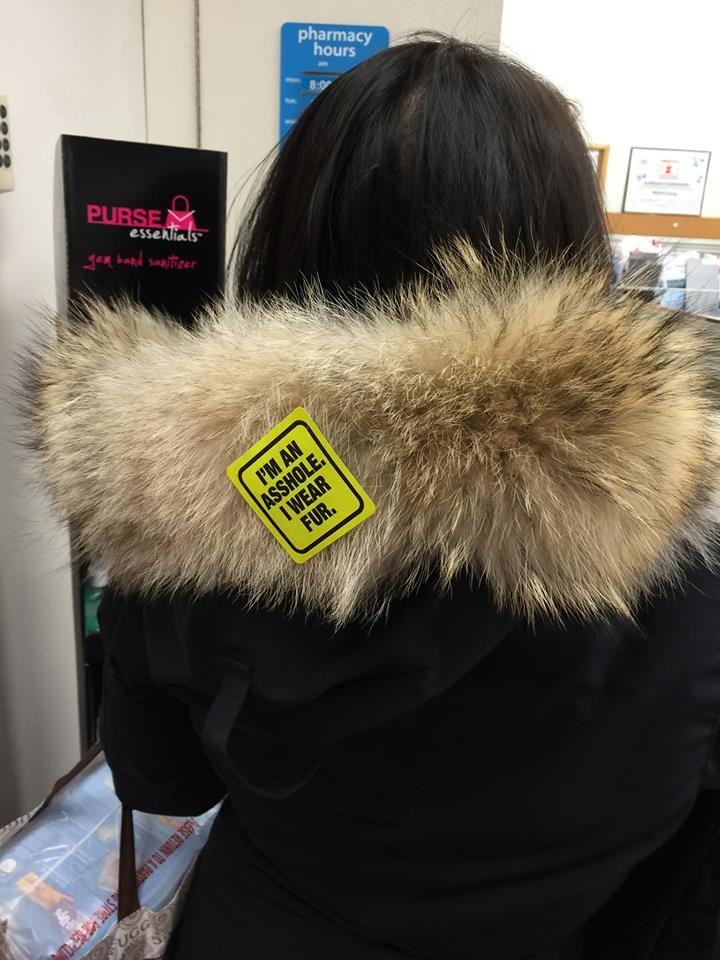 """Ha!  Anti-fur sticker: """"I am an asshole. I wear fur."""""""