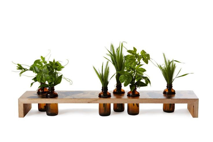 Love this idea! Little display for plants.