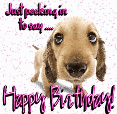 Happy Birthday Puppy Pictures Funny Images 26811wall.png: