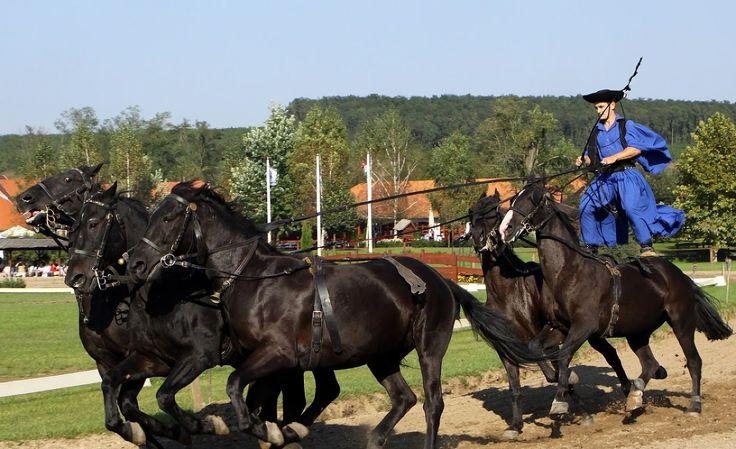 Fotó: Hungarian Horseman