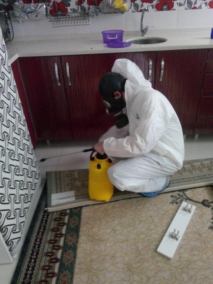 Kaliteli etkin böcek ilaçlamanın adresi http://xn--facebook-ykb.com/wordpress/index.php/tag/bocek-ilaclama/ Derman İlaçlama şu şehirde: Üsküdar, İstanbul