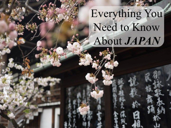 Are you planning a trip to Japan, but don't know how to prepare? In this post, I tell you everything you need to know about Japan, including what to see!