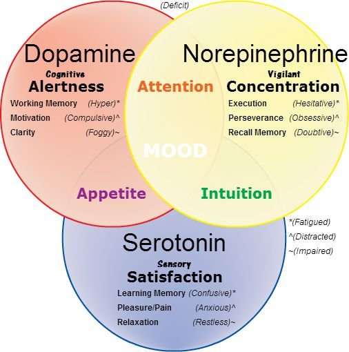 Norepinephrine, dopamine and serotonin.
