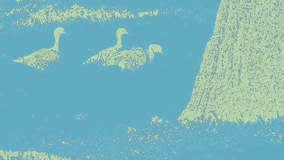 Ducks on Grass by BlackbirdArtDesign on Etsy, $35.00 Stretched Canvas 30 x 42cm