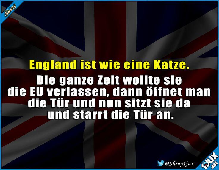 Wie eine Katze ^^' #England #Brexit #EU #Europa #Großbritannien #verlassen #Politik