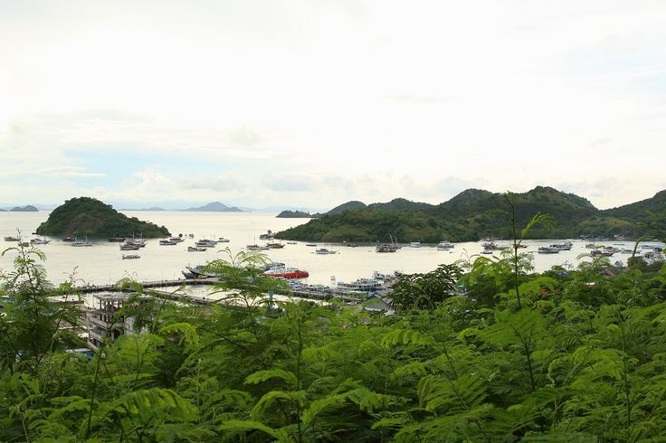 Is It Really Expensive to go to Labuan Bajo, Indonesia?
