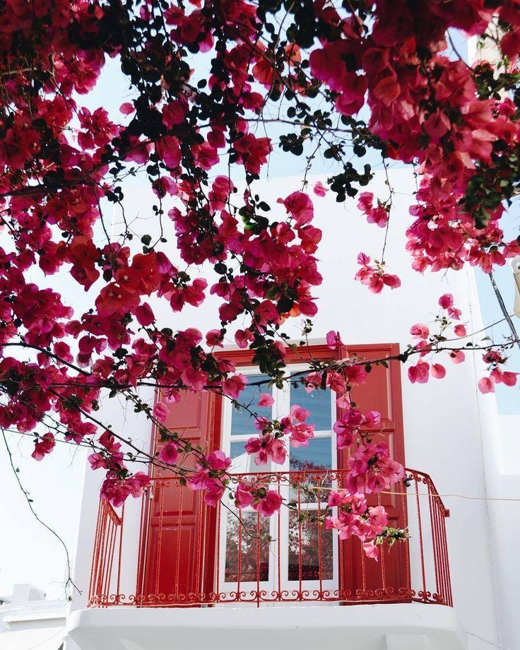 MORNING • wake UP! #lifestyle #summer #thesuites #residences #nohotels