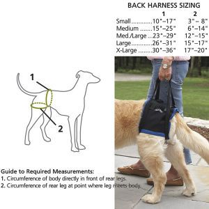 Back Harness $69.95 Touted by veterinary surgeons at the most effective walking aid for dogs with hip dysplasia, athritis, spinal trauma and fatigue.