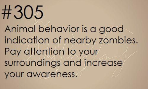 Zombie Apocalypse Survival Tip #305