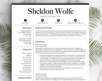 professional resume template for word pages one two and three page resume template professional cv template - Free Professional Resume Examples