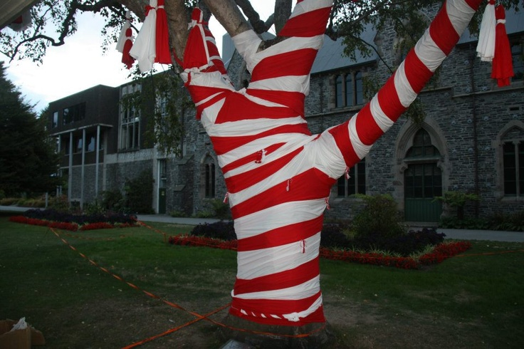 "A ""martenitsa"" tree in Christchurch, New Zealand. Happy Baba Marta day!"