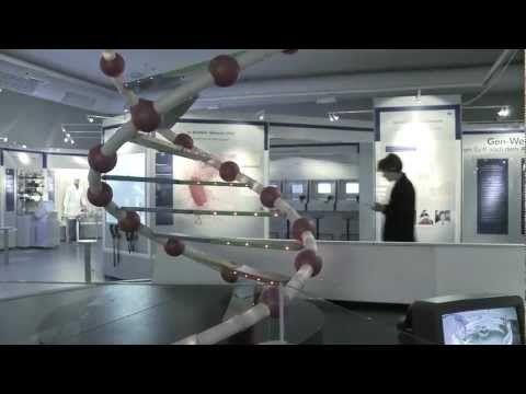 Museum Mensch und Natur: Wissen fürs Leben!