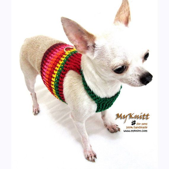 Crotchet Doggy Pet Clothes Amp Accessories 10 Handpicked