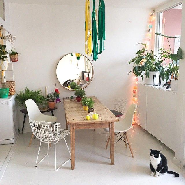 Combinación de sillas #Bertoia y sillas #Eames frente a mesa de madera
