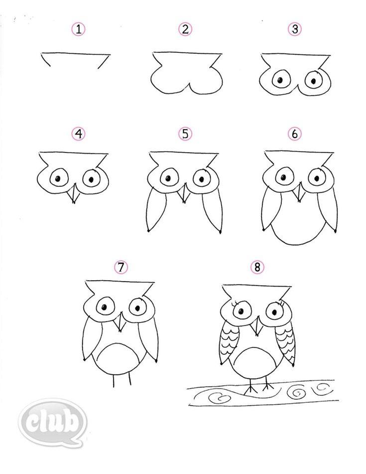 Draw an owl.
