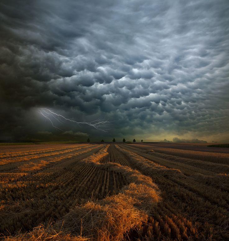 """Ein schweres Unwetter Anfang August über Baden-Würtemberg kündigte sich mit Mammatus-Wolken über dem Strohgäu an. Eine der Aufnahmen im Jahreswandkalender 2014 """"Wetterlandschaften"""": http://www.calvendo.de/galerie/wetter-landschaften/?s=Franz%20Schumacher&pcat=0&cat=0&"""