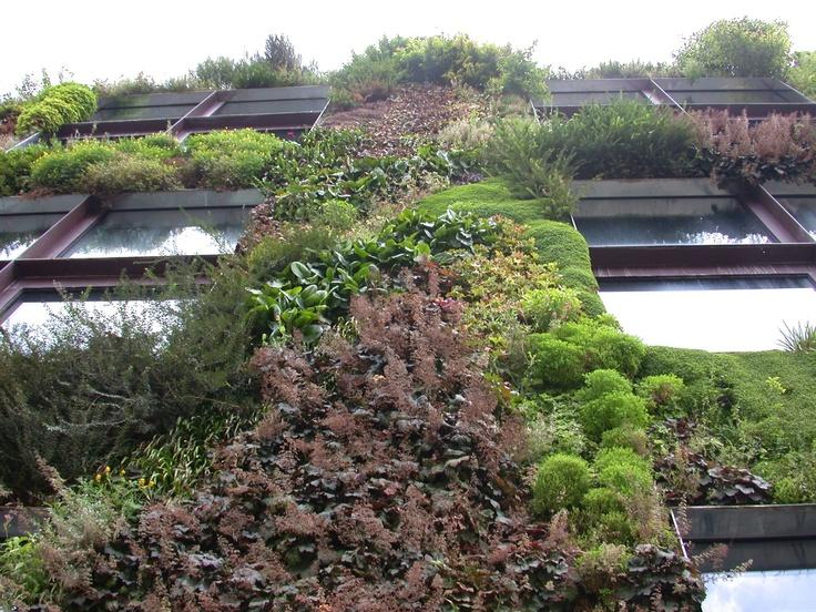 les 97 meilleures images du tableau gilles cl ment jardinier paysagiste sur pinterest. Black Bedroom Furniture Sets. Home Design Ideas