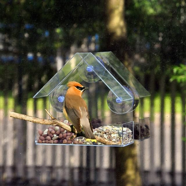 screen fitted bird feeders