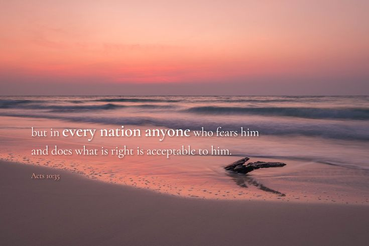 [Acts 10:35 ESV] but in every nation anyone who fears him and does what is right is acceptable to him.