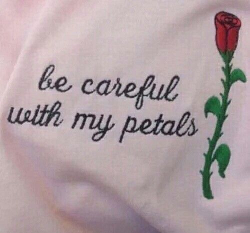 pastel pink aesthetic words flowers roses petals
