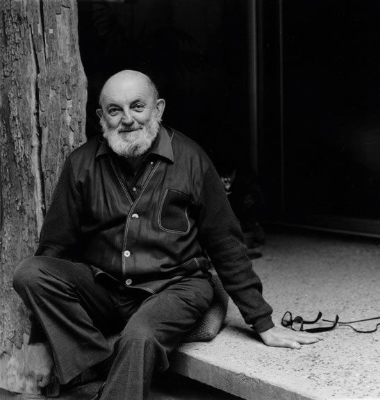 ansel adams biography essay