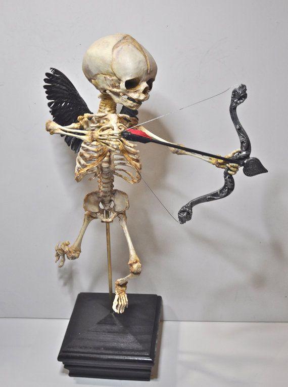 Display dello scheletro di Cupido