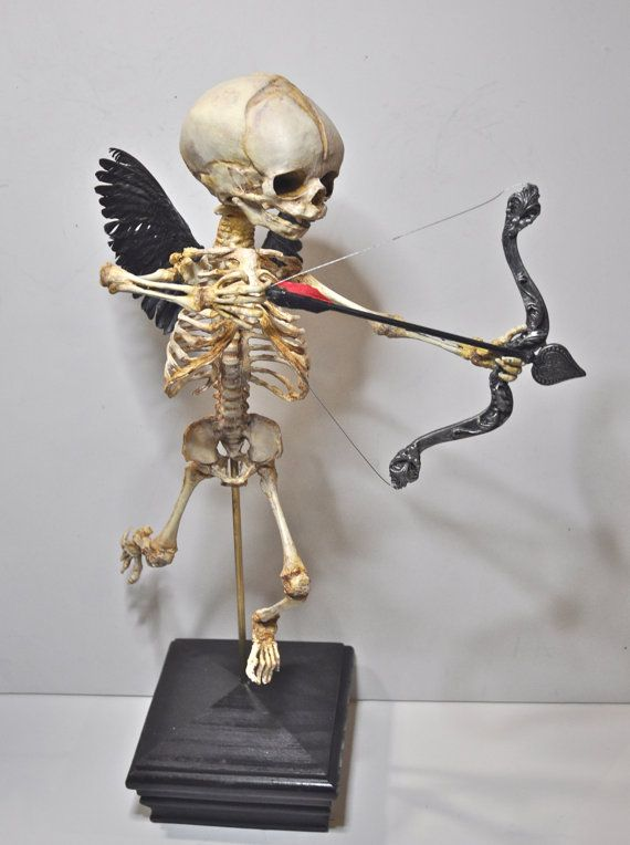 I've never wanted anything so much in my life! Cupid Skeleton Display by Dellamorteco on Etsy, $360.00