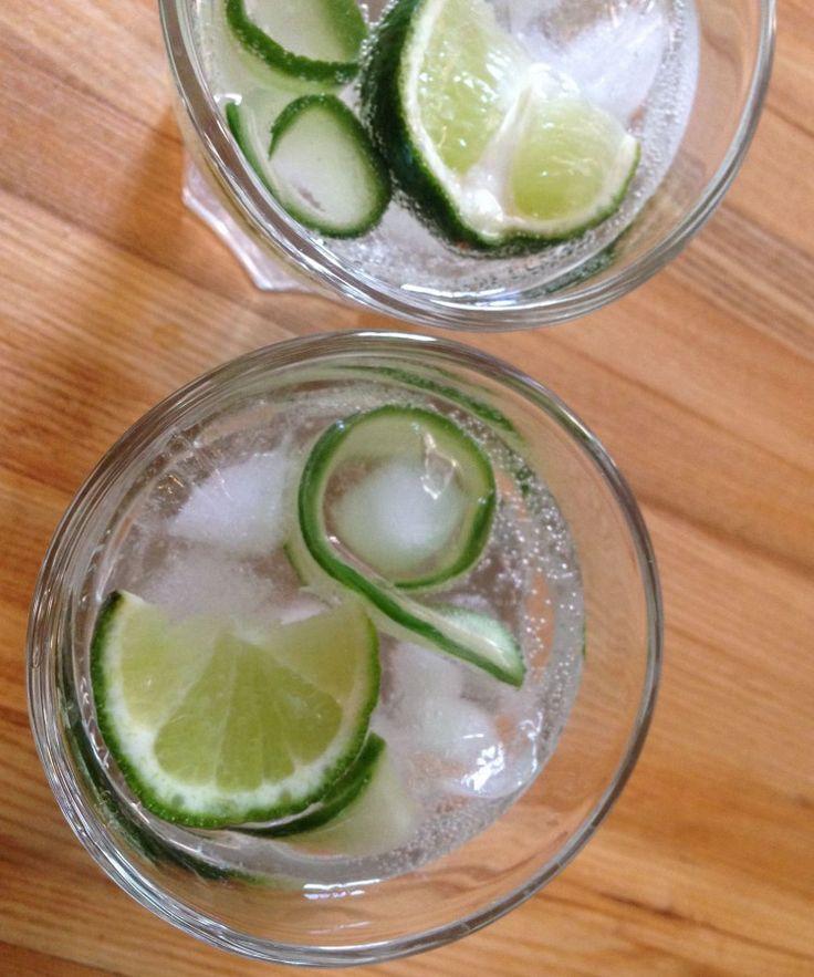 Cucumber Ginger Gin Fizz #whatveganseat #whatvegansdrink #veganlife  #happyhour #cocktails #vegandrinks #icecold #bartender #gin #highball #mixeddrinks
