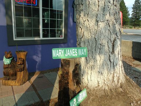 Decorative Street Sign 3 to choose from – Enjoy Weed Shack