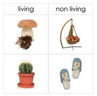 non/living #montessori