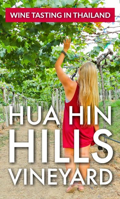 Hua Hin Hills is the southernmost vineyard in Thailand. Yes, WINE IN THAILAND.