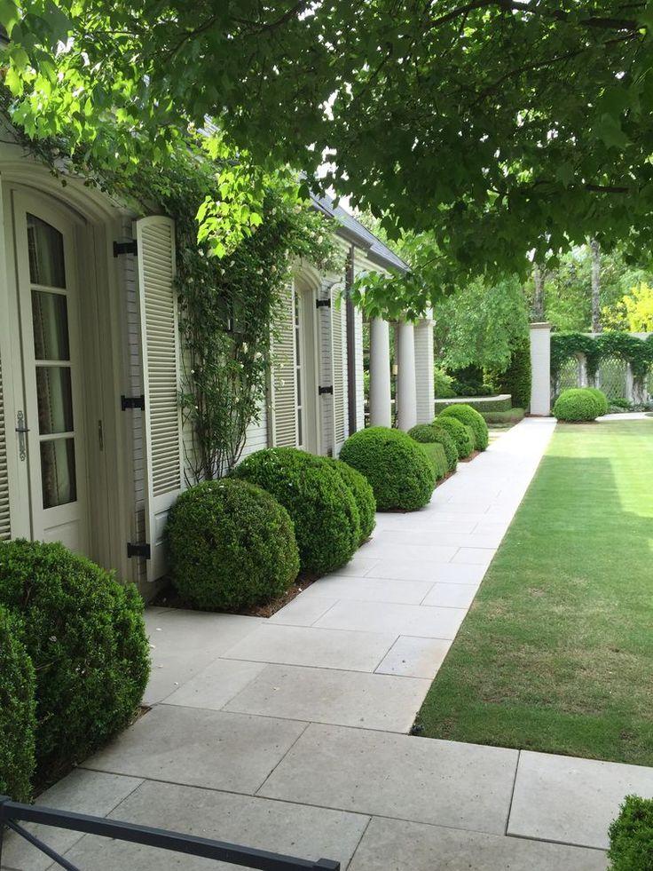 Gartentopiary geht nie aus der Mode. Topiary schafft Struktur, Formalität und