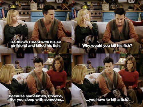 chandlerFavorite Tv, Laugh, Chandler Bing, Movie, Funny Stuff, Friends Addict, Friends Friends, F R I E N D, Friends Quotes