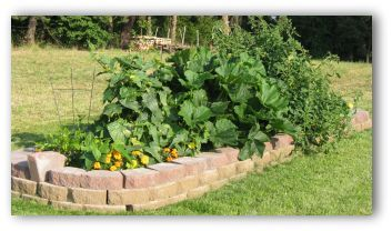 Building a Raised Vegetable Garden Bed? Free plans, Pictures, and Diagrams of Raised Bed Vegetable Gardens.