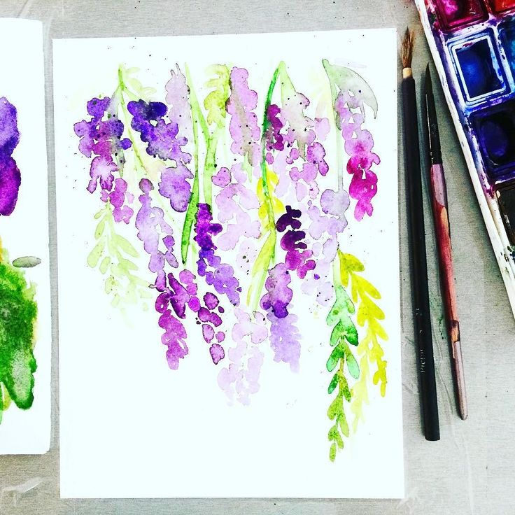 Want a #creative #challenge perfect for #summer ? I join @creativebug for #July Daily Painting Challenge hosted by @yaochengdesign - 31 Days of Flowers  to paint  this month! Join me! Day 2/ Lavander #cbdeawaday #art #artwork #artoftheday #thehappynow #thatsdarling #pursuehappy #pursuepretty #flowers #flower #watercolorpainting #watercolor #watercolorart