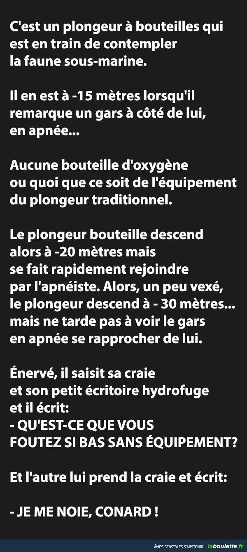 http://laboulette.fr/11745/c-est-un-plongeur-a-bouteilles-qui-est-en-train-de-contempler-la-faune