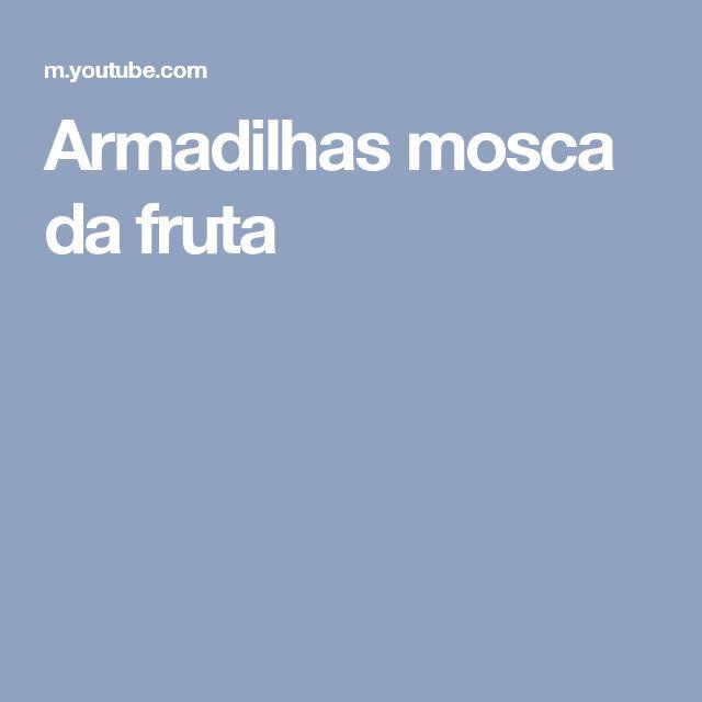 Armadilhas mosca da fruta