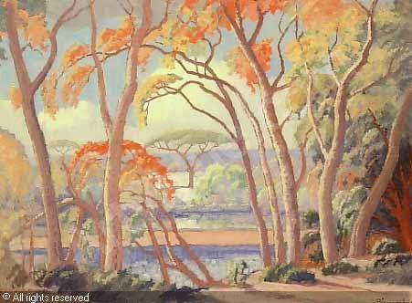 JH pierneef Msasa trees, Olifants River sold