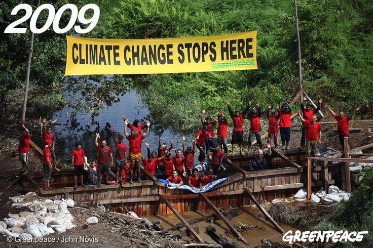 Aktivis Greenpeace dan relawan dari warga Teluk Meranti, Riau sedang menyekat kanal yang mengeringkan hamparan gambut Semenanjung Kampar, November 2009.