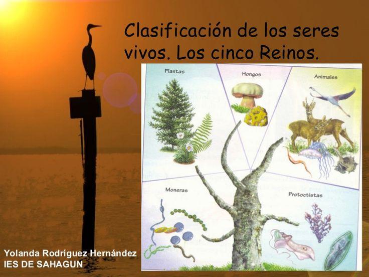 Clasificación de los seres vivos. Los cinco Reinos. Yolanda Rodríguez Hernández…
