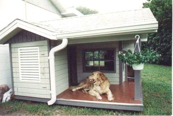 Cuccia Termica Per Cani Da Esterno.Cuccia Termica Per Cani Da Esterno Con Cucce Per Cani Da