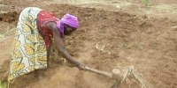 Climate change expose women, especially those living in rural areas, to challenges such as poverty, gender-based violence and growing inequalities within the society.   #Malawi  Read More: http://www.asafeworldforwomen.org/environment/env-africa/3212-malawi-climate-change.html