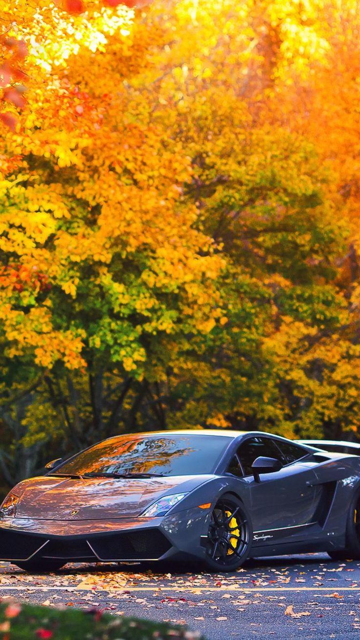 #Cars #Lamborghini Autumn Gallardo #wallpapers – Lamborghini