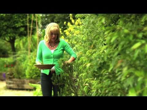 (55) Barbecued Lamb with Rosemary Chilli Sauce - Annabel Langbein, Fresh Everyday - YouTube