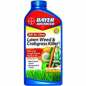 Amazon.com: Bayer Advanced 704140A All-In-One Lawn Weed and Crabgrass Killer Concentrate, 32-Ounces: Patio, Lawn & Garden