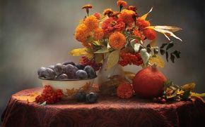 Обои осень, сливы, рябина, фрукты, натюрморт, тыква, цинния, бархатцы