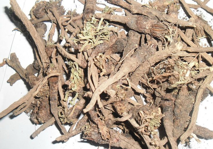 Pellitory root (anacyclus pyrethrum) is considered to be of Arab origin, because Charak, Sushrut and Vagbhatt do not mention about it. Probably Unani Hakims (herbal doctors) brought it to India. But today it is considered to be one of the most...