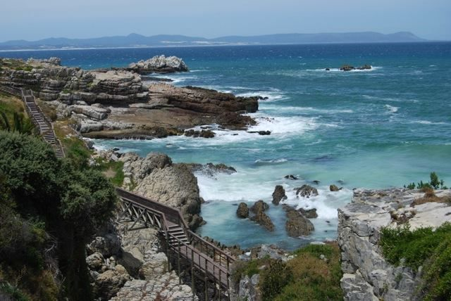 Along the cliff path, Hermanus