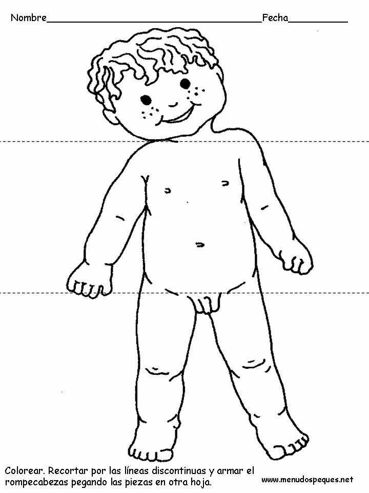 Cuerpo Humano Para Colorear Pintar Nino Jpg 720 960 Preschool Learning Baby Doll Pattern Activities For Kids